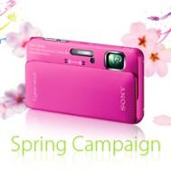 VIP Member Spring Campaign