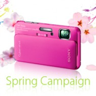 VIP Member Spring Campaign
