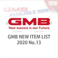 GMB NEW ITEM LIST 2020 No.13